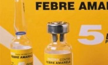 En Catamarca disponible la vacuna contra la Fiebre Amarilla