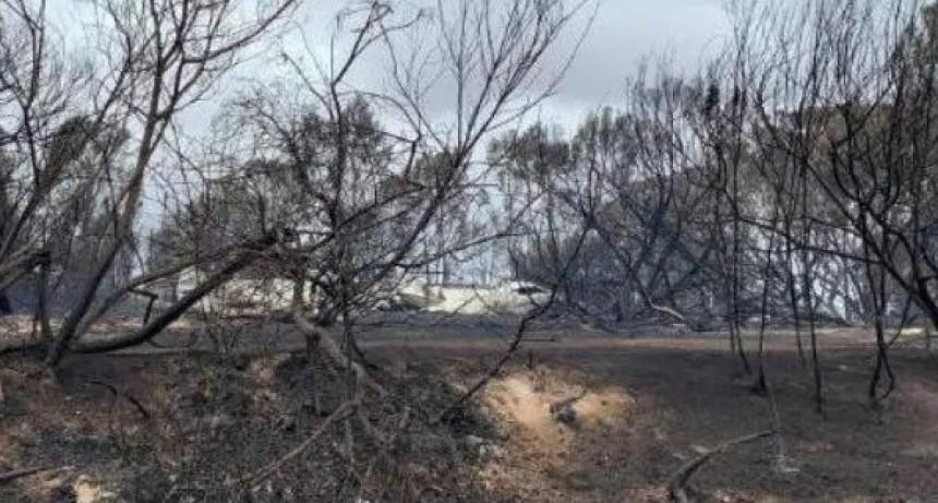 Las lluvias trajeron alivio a una Australia prendida fuego
