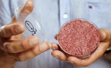 Ya Trabajan En La Fabricación De Carne Cultivada