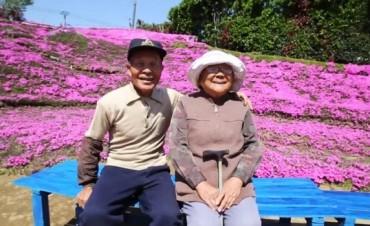 Plantó flores durante dos años para hacer feliz a su esposa ciega