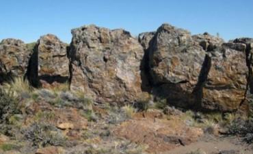 Descubren un yacimiento del Jurásico en la provincia de Santa Cruz