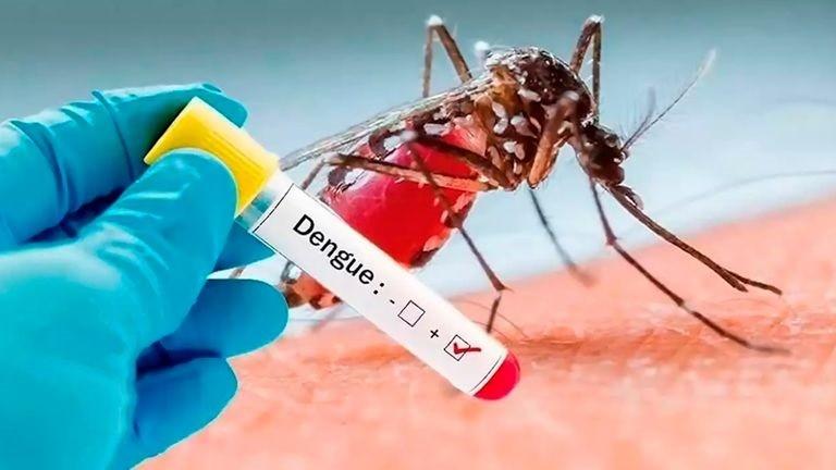 Confirman primer caso de dengue en Catamarca