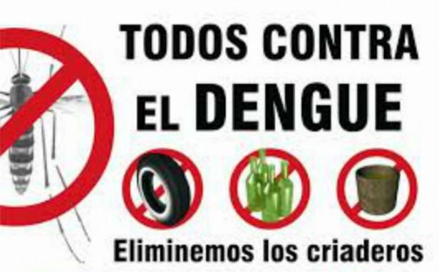 Salud aconseja extremar medidas de prevención contra el dengue