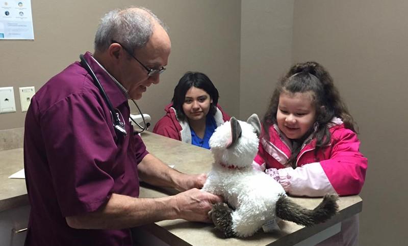 """Un veterinario atendió a un gato de peluche """"enfermo"""" de una niña autista"""