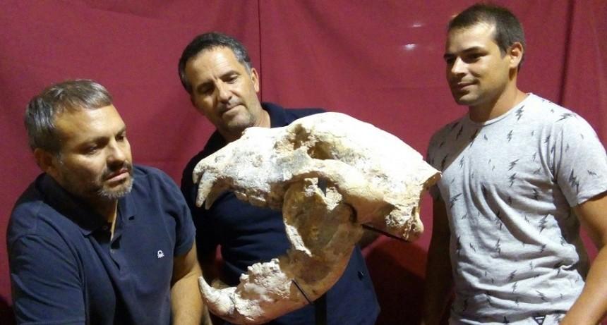 Descubren un oso gigante de 700 mil años de antigüedad en San Pedro