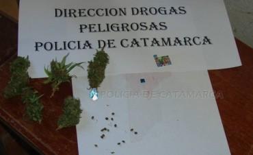 Secuestran más dosis de LSD y Marihuana en el sur de la Capital