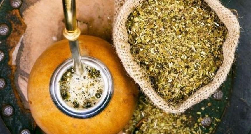 Autorizan un aumento del 37,5% en la yerba mate