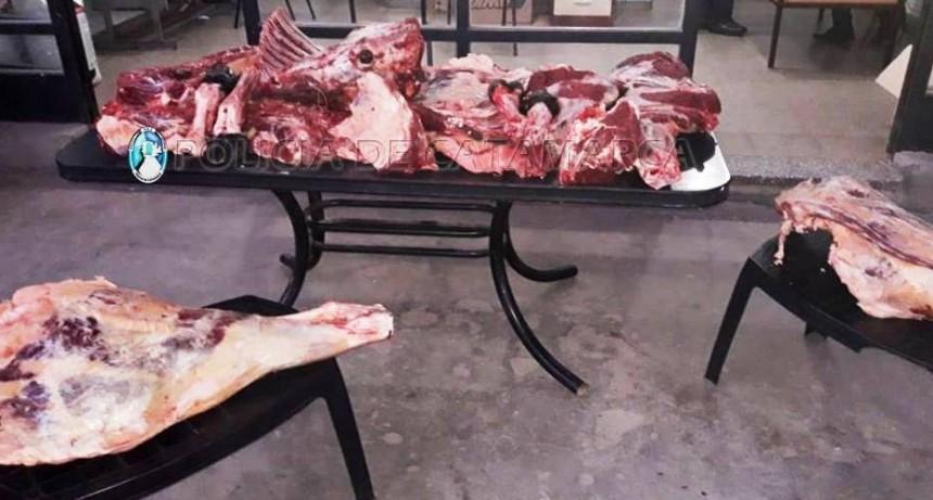 Decomisan pescado y carne vacuna en un puesto caminero de Valle Viejo