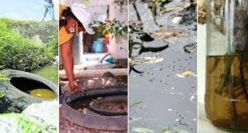 Tareas de limpieza: el 85 % de los mosquitos proviene de criaderos intradomiciliarios
