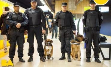 Perros rescatados ahora trabajan en la policía Metropolitana