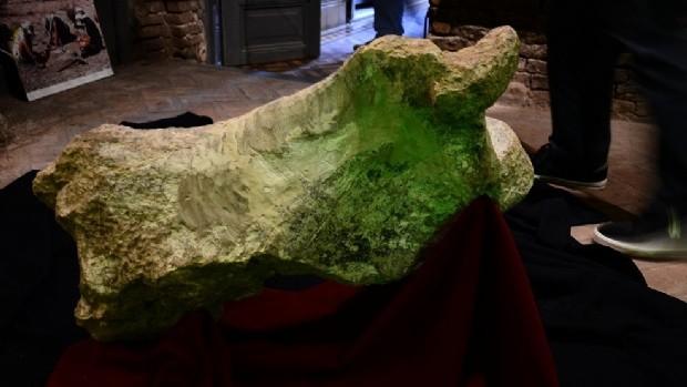 Descubren un perezoso gigante de 700 mil años de antigüedad