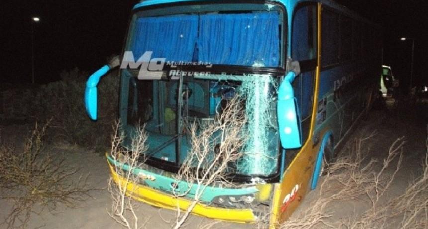 Fatal accidente: Mientras manejaba sufrió una descompensación y falleció