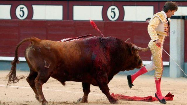 - Al torero le entró la cornada en el recto esta grave