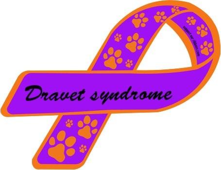 23 de junio, Día Internacional del Síndrome de Dravet