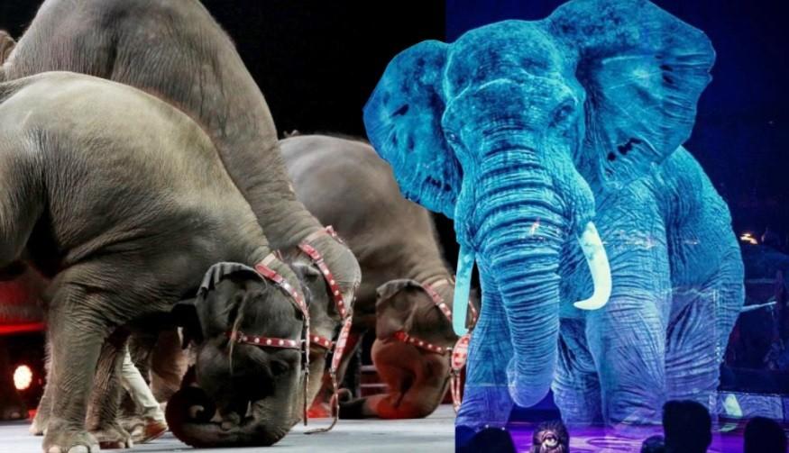 Éste circo reemplaza animales por hologramas para combatir el maltrato animal