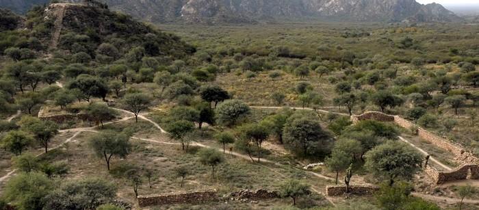 Sitios arqueológicos: Catamarca participó de la reunión virtual del QhapaqÑan Argentina