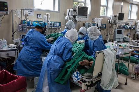 Coronavirus en Argentina: 2.606 casos positivos y 34 muertes