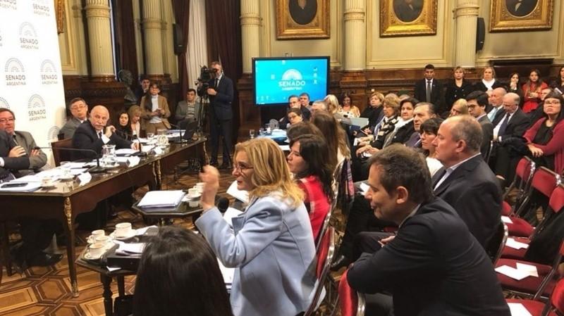 Aborto legal: arranca la segunda semana de audiencias en el Senado