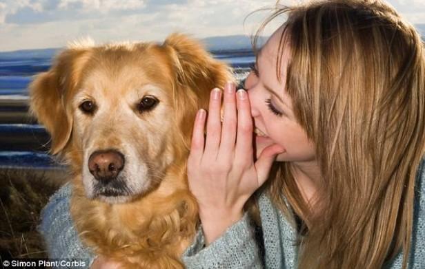 Los perros entienden más de 160 palabras