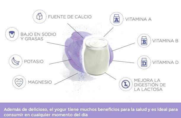 ¿Por qué comer un yogur todos los días?