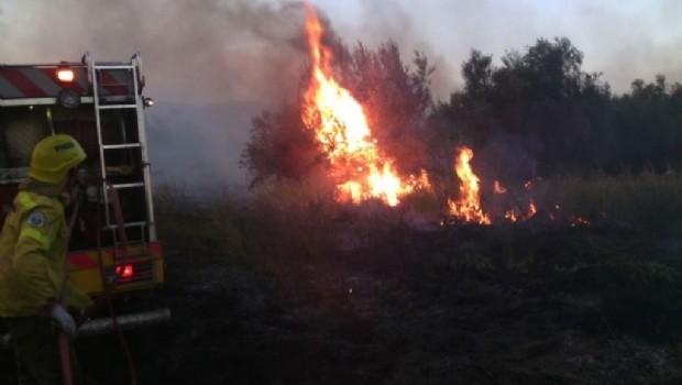 Se quemaron alrededor de 150 hectáreas en Capayán