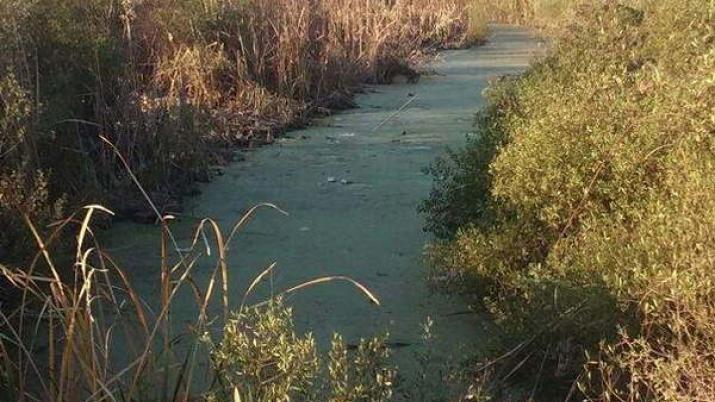 Una niña de un año y diez meses murió al caer en una represa
