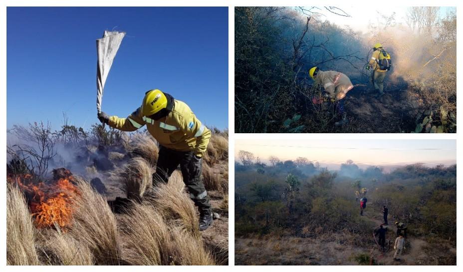 Récord de Incendios forestales durante el fin de semana