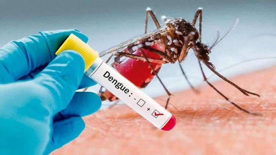 Capacitan para combatir al dengue