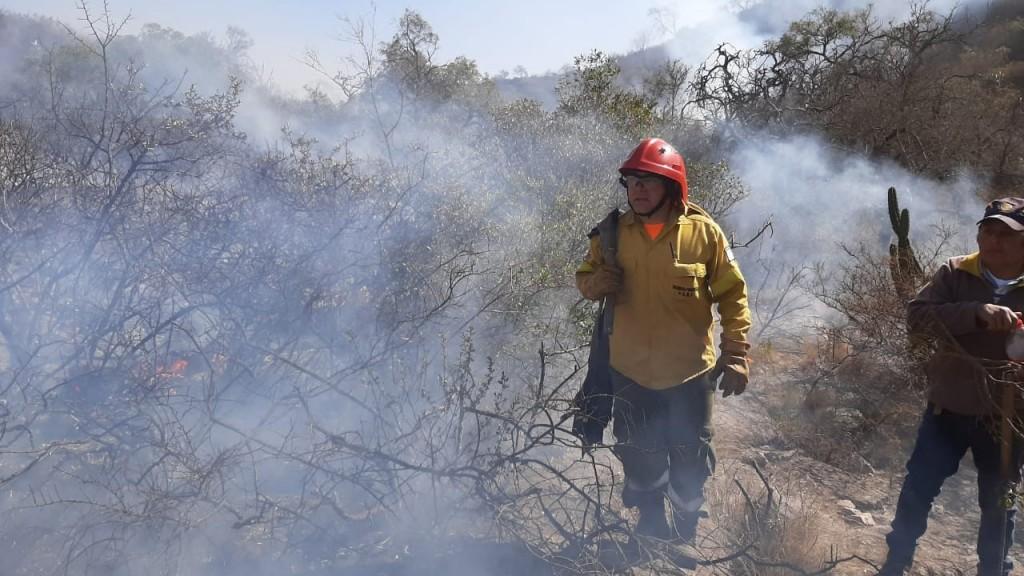 No cesan los incendios forestales en la provincia