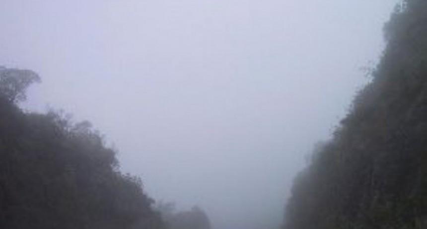 Transitar con precaución en La Cébila: derrumbes y poca visibilidad por lluvia