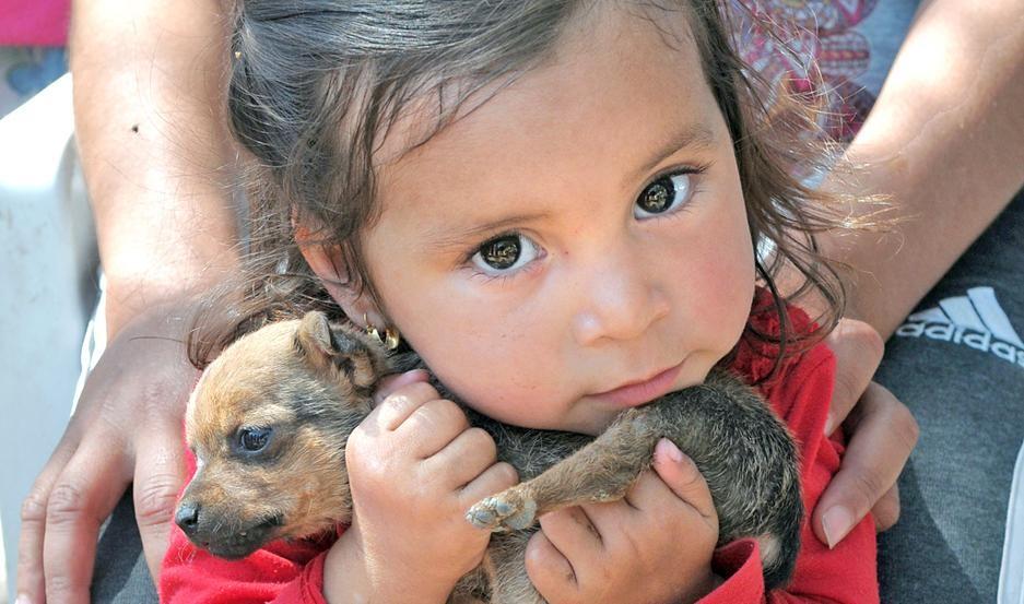 Ana Belén, la niña bendecida por Dios regresó a su casa y abrazó a  Chicho