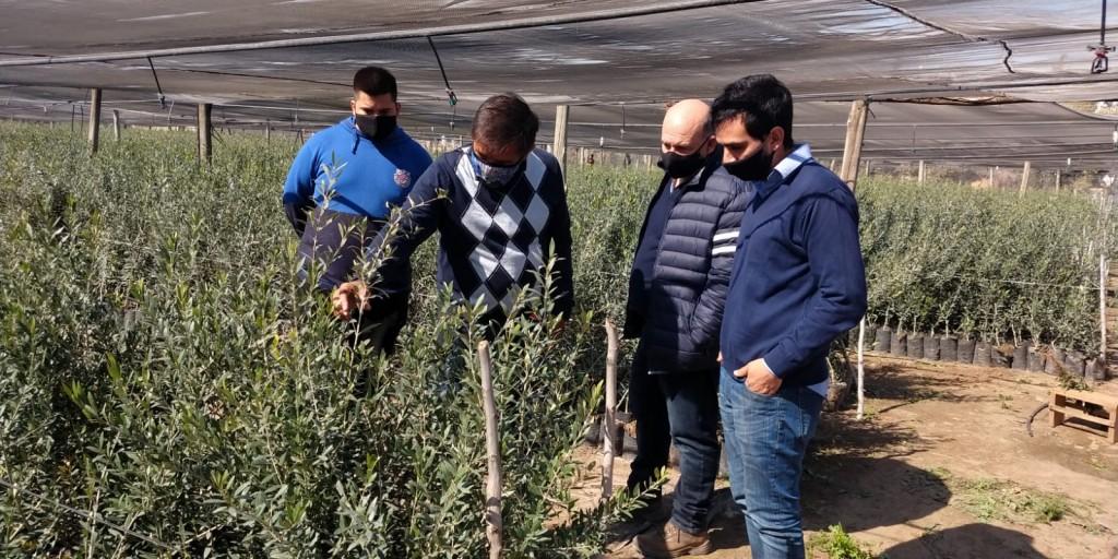 Capacitan a jóvenes en materia agrícola con salida laboral en Catamarca