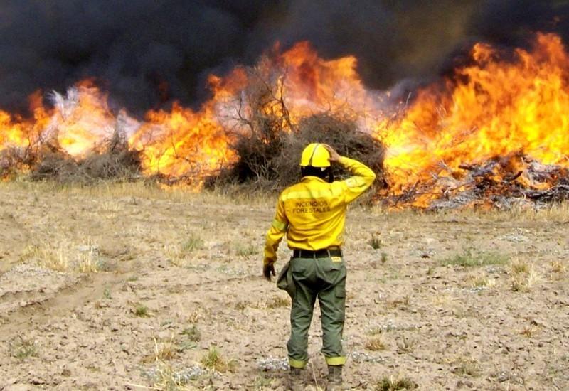 """Brigada de Incendios Forestales pide una reunión de """"carácter urgente"""" al Director de Defensa Civil"""