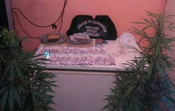 Secuestran un kilo de droga y plantas de  marihuana en Valle Viejo