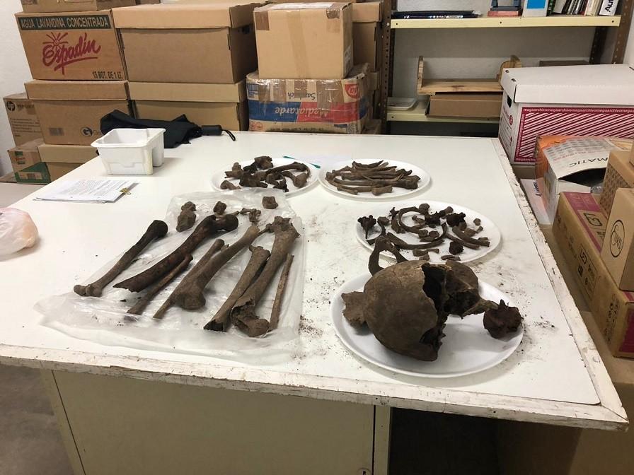 Rescate de restos óseos arqueológicos