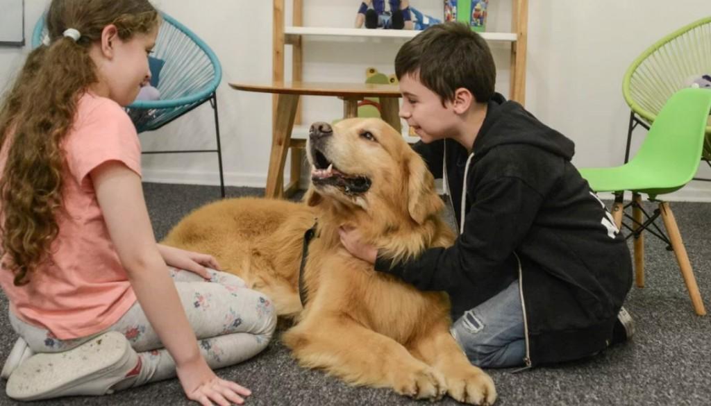 La historia de Titán, el perro que acompaña a chicos que deben declarar como víctimas o testigos