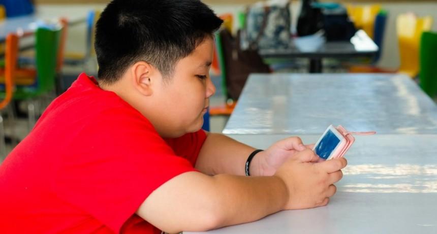 Obesidad infantil: el 90% pasa más de 5 horas conectado