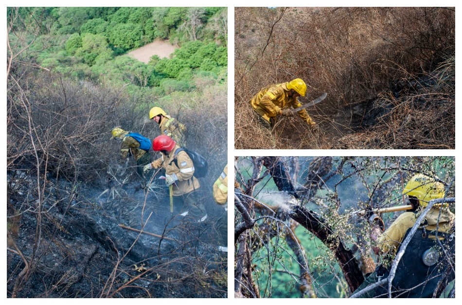 Incendio Forestal en Los Ángeles