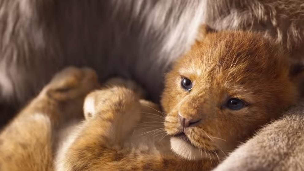 El tráiler de 'El Rey León', la nueva versión real de Disney