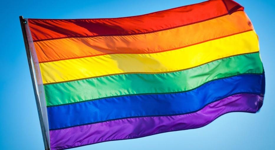 VIII Marcha y Festival por la Diversidad
