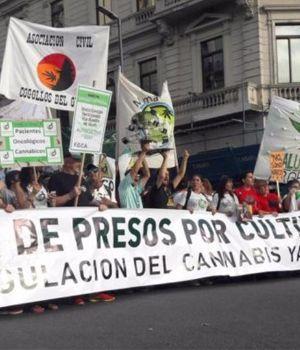Nueva marcha por legalización de marihuana recreativa y medicinal