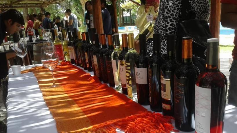 Promueven la realización de la primera Feria provincial del Vino en el Paseo de Compras catamarqueño