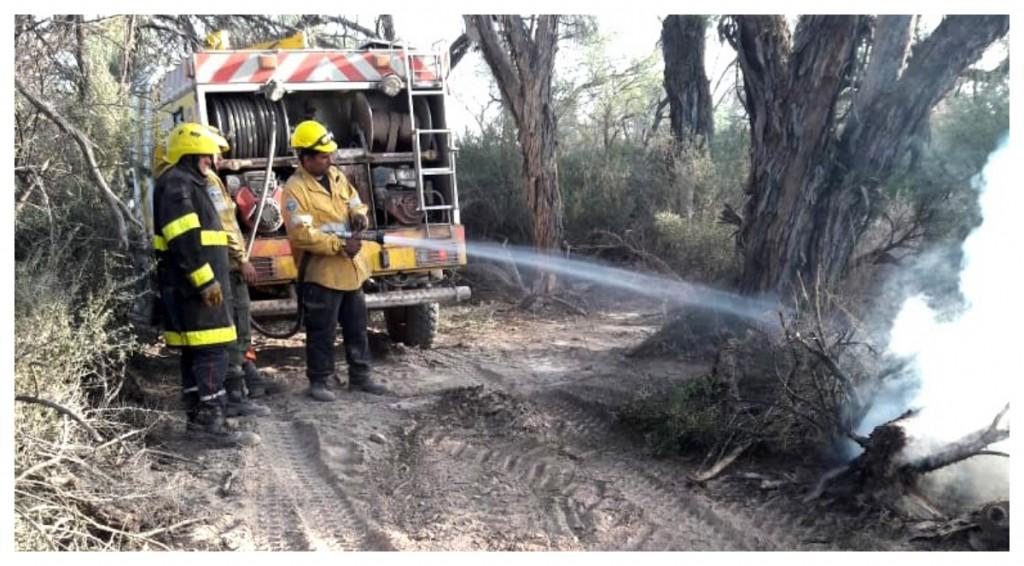 Brigadistas contienen un incendio en el departamento Pomán