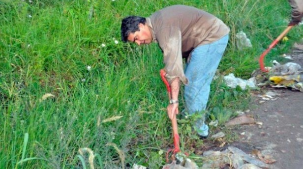 CHACO:Capitanich madrugó y tomo pala y rastrillo para limpiar calles