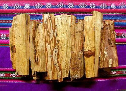 """10 beneficios del Palo Santo, la """"madera sagrada"""""""