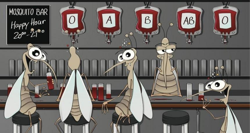 Mosquitos prefieren picar a las personas que toman cerveza